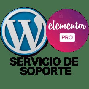Formación de Marketing Digital (Servicio de Soporte)